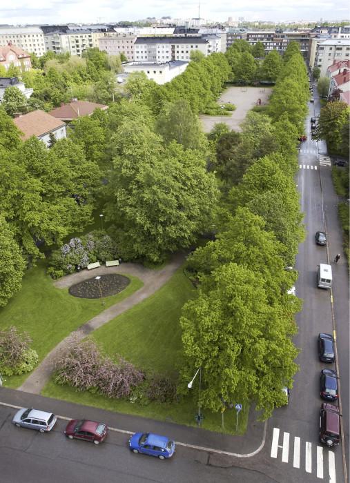Rehevät puistot ja hyvinvoivat kaupunkipuut ovat yksi Helsingin vetovoimatekijöistä.