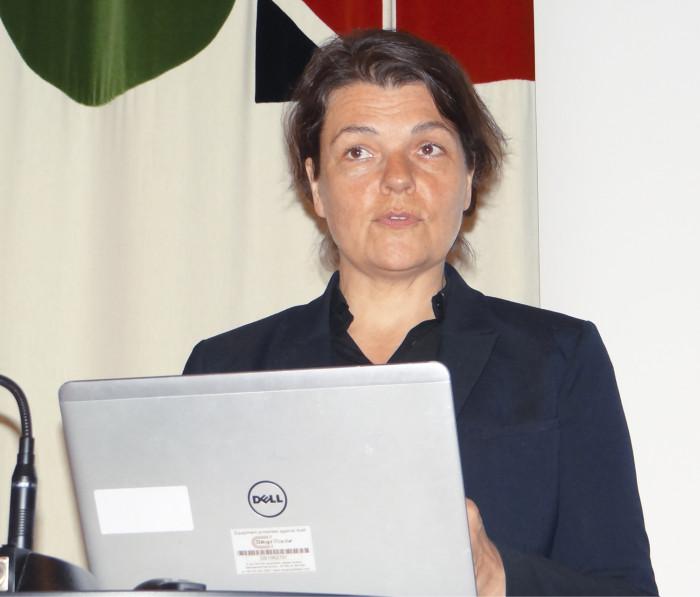 Kaupunginarkkitehti Karolina Keyzer vastaa Tukholman arkkitehtuuripolitiikan kehittämisestä.