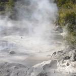 Rotoruan ympäristössä pääsi näkemään myös Uuden Seelannin tyypillisiä kuumia lähteitä.