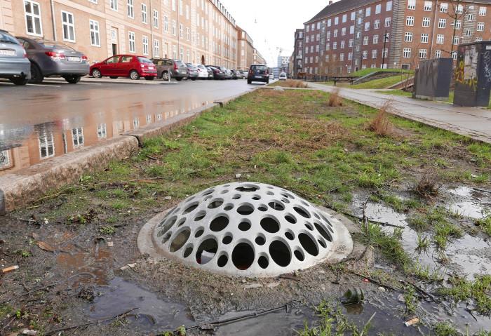 Kööpenhaminan Tåsinge Pladsin viemärikannetkin on tehty niin, että ne keräävät tehokkaasti sadevesiä. Puiston pientareiden kasvit on valittu niin, että ne kestävät liukkaudentorjunnassa käytettävää suolaa.