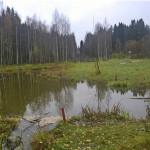 Puronnotkon kosteikko Kuopiossa. Kuva: Jari Koskiaho