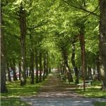 Kuva: Mariehamn stad
