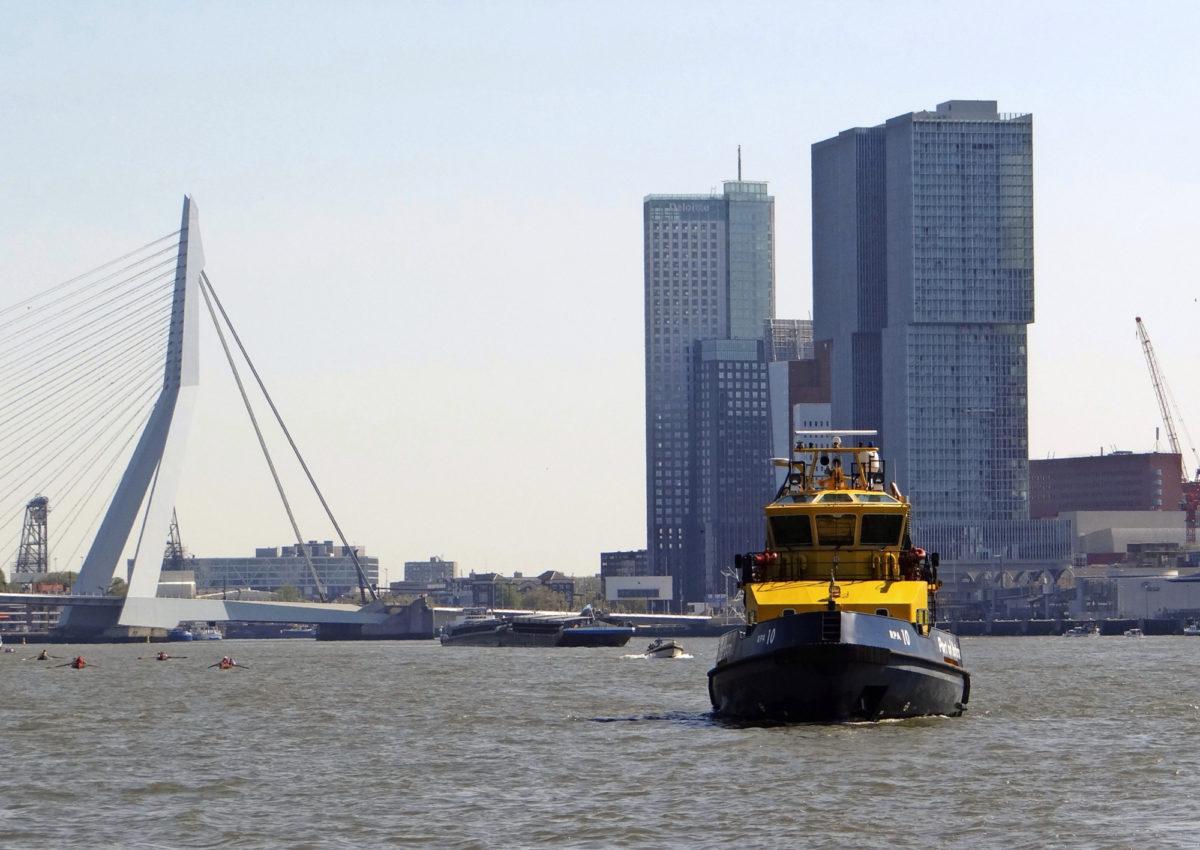 """Vuonna 1996 käyttöön otetusta Erasmus-sillasta (Van Berkel & Bos) tuli hetkessä Rotterdamin uusi symboli. Silta sai välittömästi lempinimen """"Joutsen"""". Erasmus-silta vauhditti Kop van Zuidin entisen telakka- ja satama-alueen muodonmuutosta """"Maas-joen Manhattaniksi""""."""